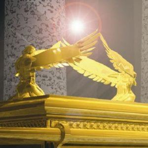 Ark Angels