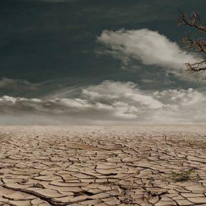 Desert Drought