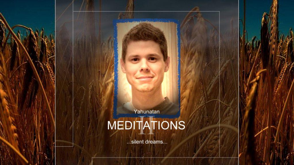 Meditations II: Silent Dreams (2010)